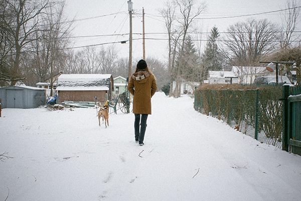 winterbluebush_1