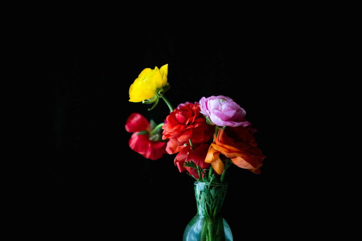 mixed floral bouquet against black background