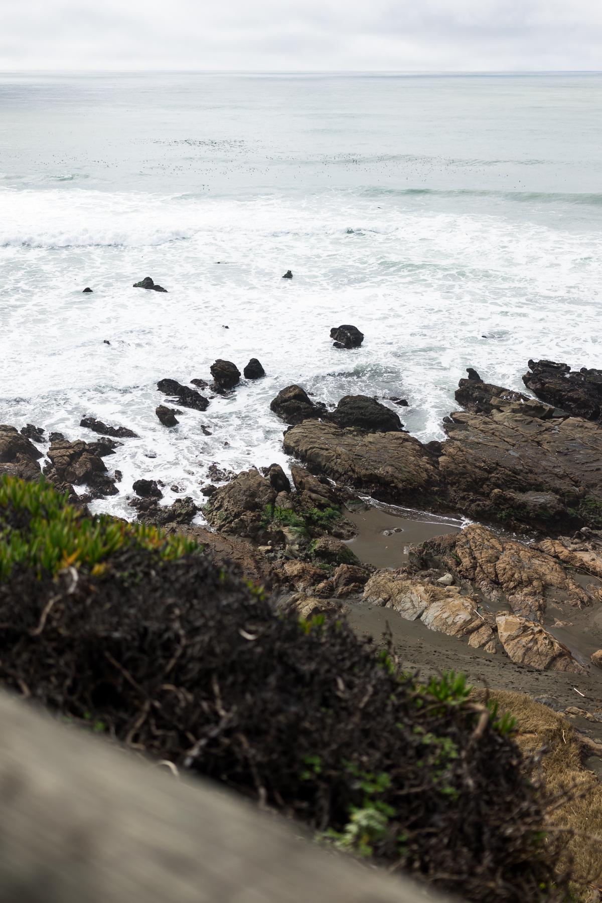 Cambria, San Fransisco, Monterey, Cayucos, Morro Bay, and Venice
