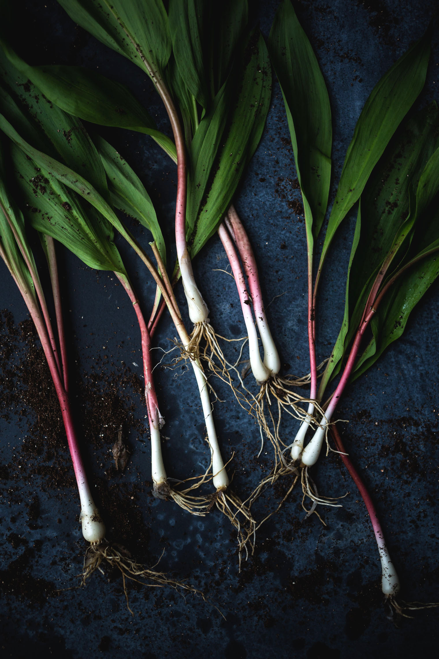 Simple Sundays: 5 Way To Cook With Ramps + Ramp Butter